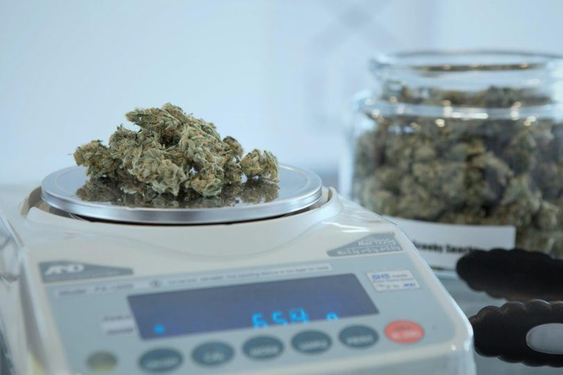 Weighing weed on a scale